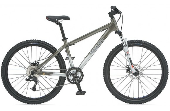 Горный велосипед Giant Rainier W (2008)