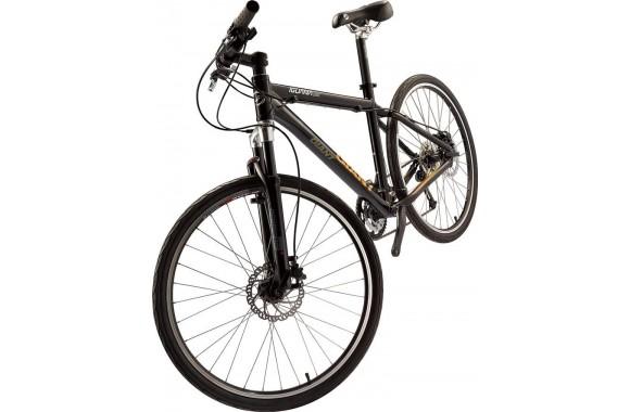 Горный велосипед Giant Iguana Disc (2010)