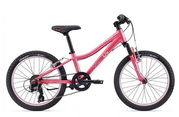 Велосипед Giant Enchant 20