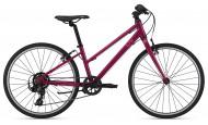 Велосипед Giant Alight 24 (2021) (2021)